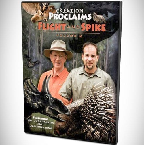 flight and spike Creation Proclaims