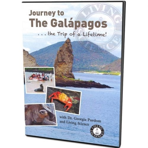 Journey to the galapagos