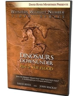 Dinosaurs Down Under | Part 2: The Flood DVD