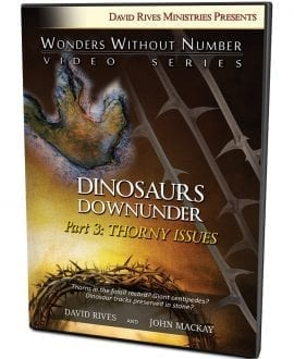 Dinosaurs Down Under | Part 3: Thorny Issues DVD