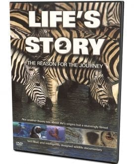 Life's Story 2