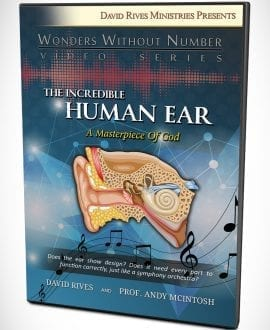 The Incredible Human Ear - A Masterpiece of God DVD