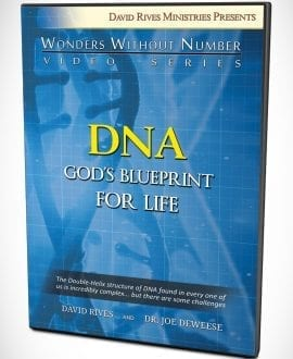 DNA - God's Blueprint For Life DVD