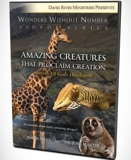 Amazing Creatures That Proclaim Creation DVD