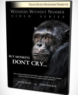 But Monkeys Don't Cry DVD