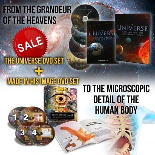 PACK: MADE IN HIS IMAGE & THE UNIVERSE
