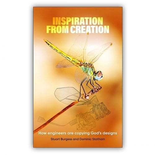 Inspiration from Creation book