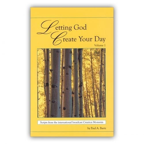 Letting God create your day