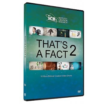 That's A Fact 2 DVD