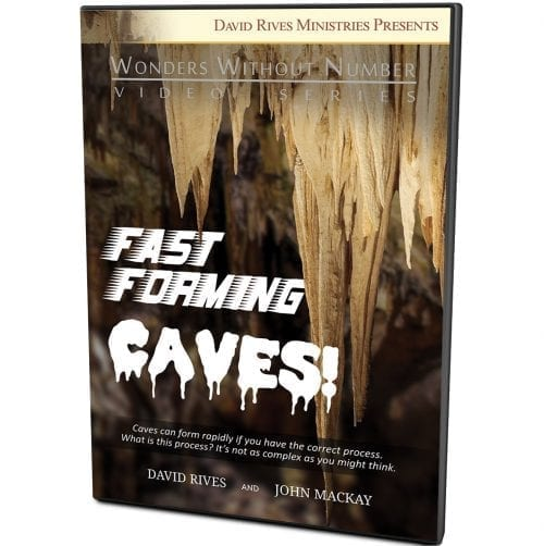 Fast Forming Caves DVD