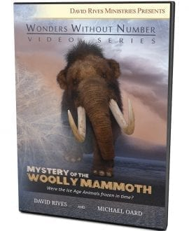 Mystery of the Woolly Mammoth DVD