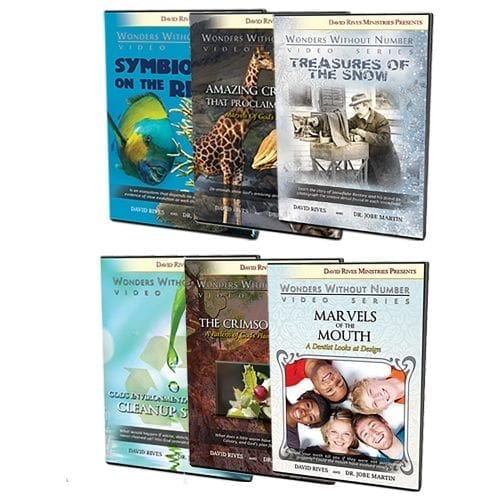 "The Jobe Martin ""Wonders"" Video Bundle"