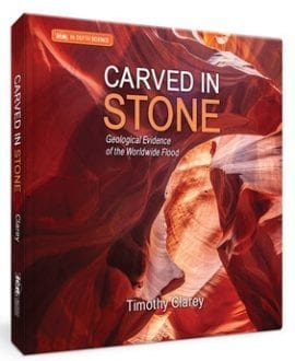 Carved In Stone Book