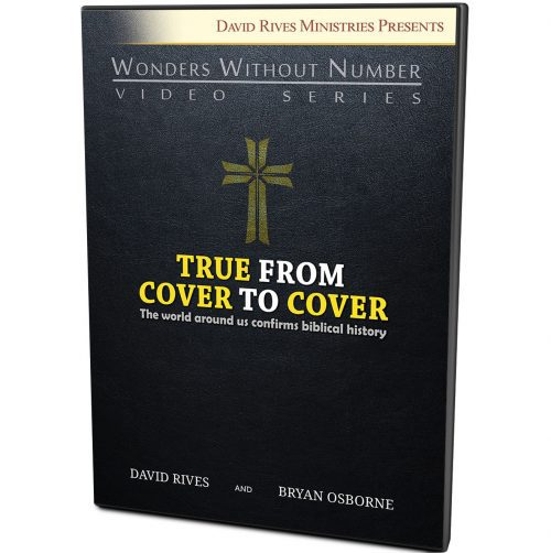 True From To Cover DVD