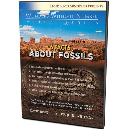 6 Facts About Fossils DVD