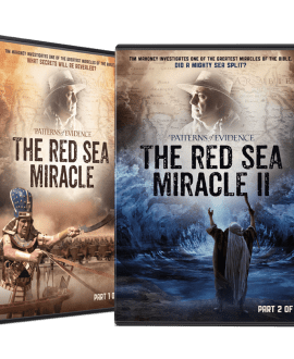 THE RED SEA FILM COMBO PACK
