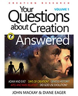 your questions about creation answered book