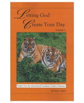 Letting God Create Your Day Vol. 3 |CM