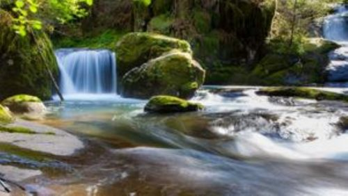 Peace like a River-Blu-Ray DVD | Creation Scapes