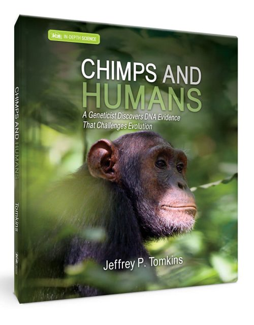 Chimps and Humans Book
